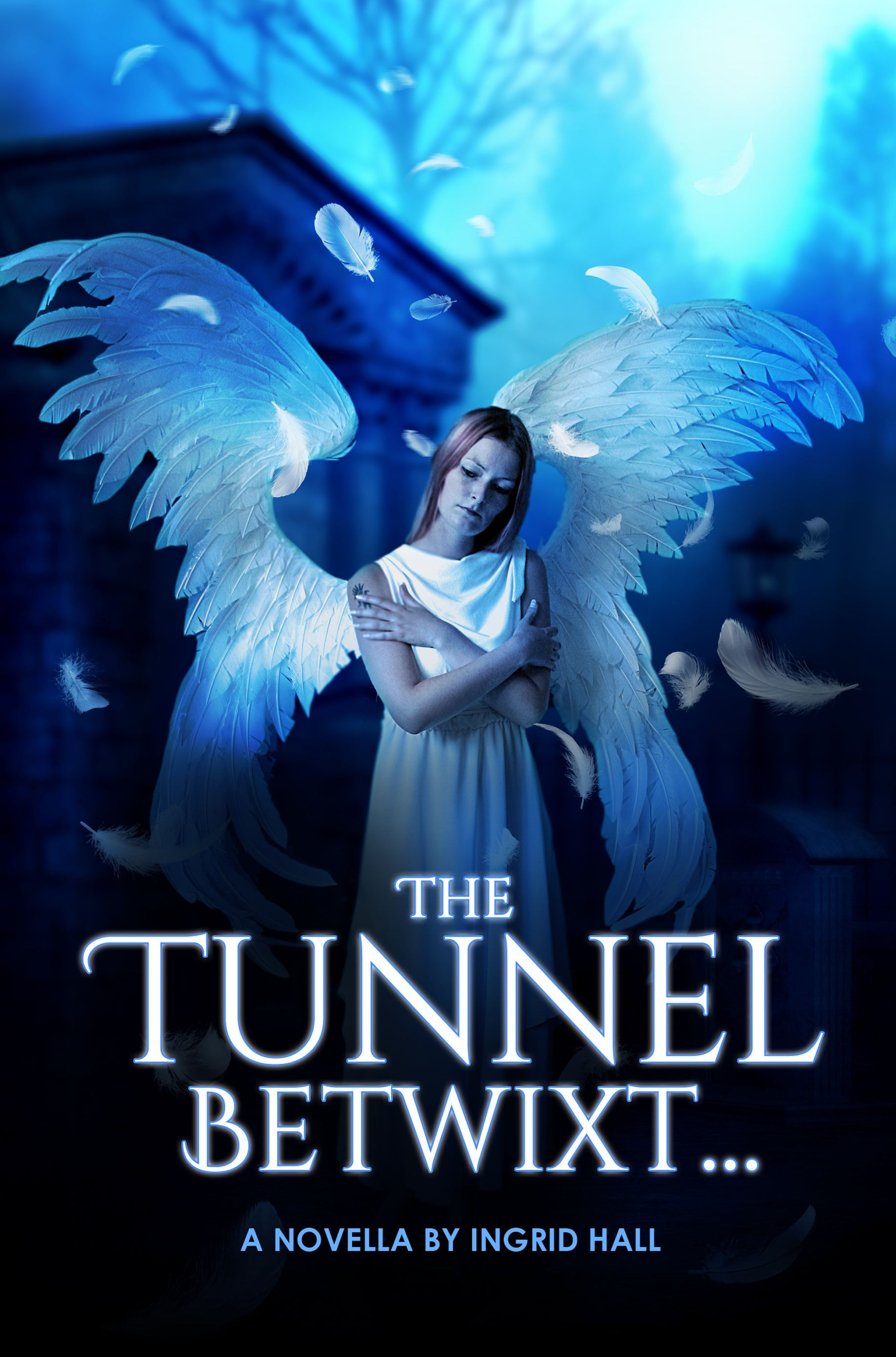 The Tunnel Betwixt by Ingrid Hall